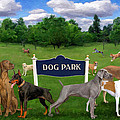 Dog Park by Frank Harris