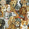 Dog Spread by Ditz