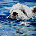 Doggie Paddle by Mary Sparrow