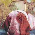 Dog's Portrait No 1 by Nicolas Nomicos