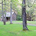Dogwood Cabin by Roe Rader