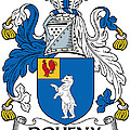 Doheny Coat Of Arms Irish by Heraldry