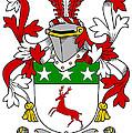 Doherty Coat Of Arms Irish by Heraldry