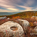 Dolly Sods Wilderness D30019870 by Kevin Funk