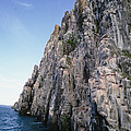 Dolomite Cliff With Guillemot Colony by Tui De Roy