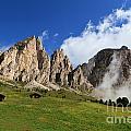 Dolomites In Badia Valley  by Antonio Scarpi