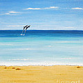 Dolphin Beach by Jerome Stumphauzer