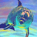 Dolphin by Bernadett Kovacs