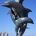 Dolphin Dance by J Andrel