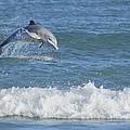 Dolphin In Surf by Bradford Martin