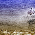 Dolphin Jumping by David Millenheft