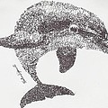 Dolphin by Michael Volpicelli