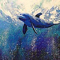 Dolphin Play by Gayle Utter