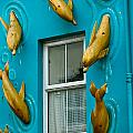 Dolphins At The Window by Denise Mazzocco