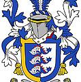Dolphyn Coat Of Arms Irish by Heraldry