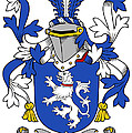 Domvile Coat Of Arms Irish by Heraldry