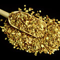 Don Quai Seeds by Th Foto-werbung/science Photo Library
