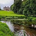 Doneraile Court Estate In County Cork by James Truett