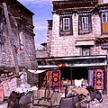 Donkeys In Jokhang Bazaar by Anna Lisa Yoder