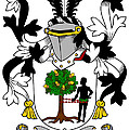 Donnellan Coat Of Arms Irish by Heraldry