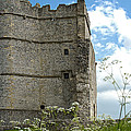 Donnington Castle by Mark Llewellyn
