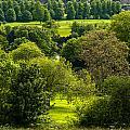 Donnington Grove Newbury by Mark Llewellyn