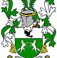 Donohue Coat Of Arms Irish by Heraldry