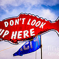 Don't Look Up Here Crab Cooker Sign Photo by Paul Velgos