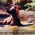 Don't Say Whoa In A Mudhole by Tommy Anderson
