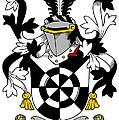 Doolan Coat Of Arms Irish by Heraldry