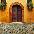Door And Flowers In A Tuscan Courtyard by Greg Matchick