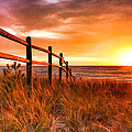 Door County Europe Bay Fence Sunrise by Christopher Arndt
