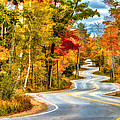 Door County Road To Northport In Autumn by Christopher Arndt