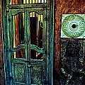 Door Guard by AR Harrington Photography