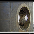 Door Knob Hole I by Debbie Portwood