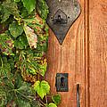 Door To My Heart by Georgia Fowler