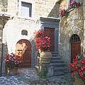 Doors In Bagnoregio by Barbie Corbett-Newmin