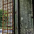Doors  by Sara Hudock