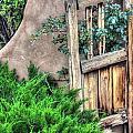 Door, Santuario De Chimayo by Lanita Williams