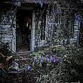 Doorway And Flowers by Ken Frischkorn