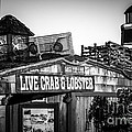 Dory Fishing Fleet Live Crab And Lobster Sign Picture by Paul Velgos