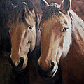 Dos Equis by Terri  Meyer