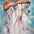 Dos Jellyfish by Jeff Lucas