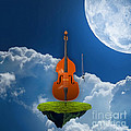 Double Bass by Marvin Blaine