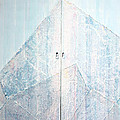 Double Doors To Peaceful Mountain by Asha Carolyn Young