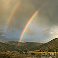 Double Rainbow In Desert by Matt Tilghman
