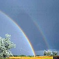 Double Rainbows In Colorado by Edmond Hogge