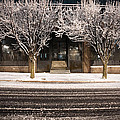 Doubletree by Scott Moore