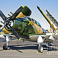 Douglas Ad-5 Skyraider Attack Aircraft by Scott Germain