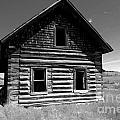 Douglas Lake Homestead Black And White II by Phil Dionne